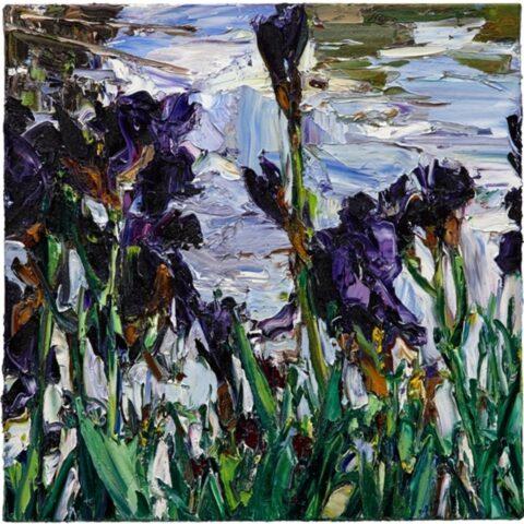 Paris pond irises (4)