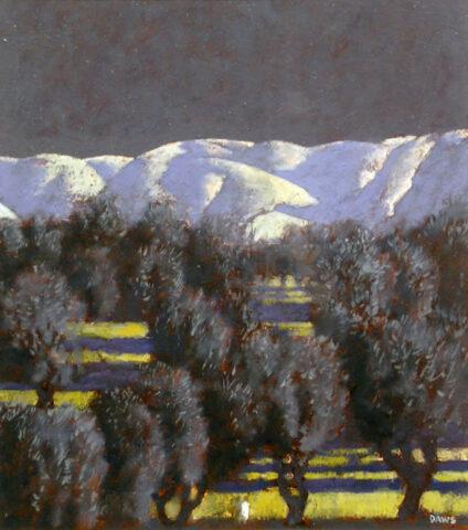 Study, olive grove