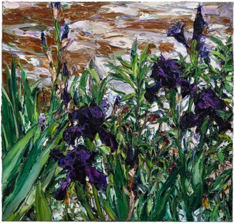 Paris pond irises (3)