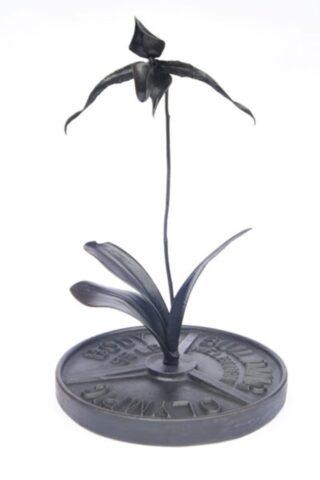 Black Orchid (Paphiopedilum Vanitas)