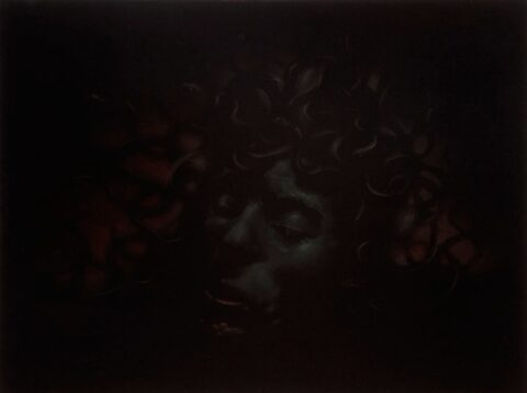 As the sun sets slowly in the west, the hideous gorgon Medusa is slain