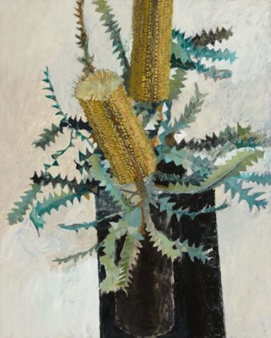 Banksia on black