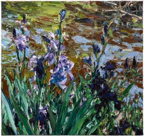Paris pond irises (2)