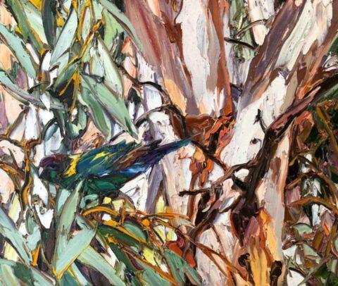 Wilpena eucalypt parrot
