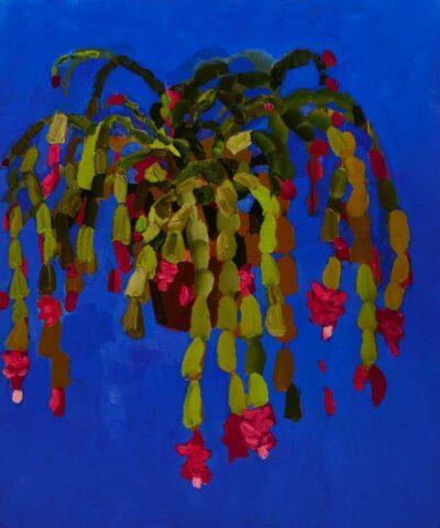Hope's Cactus
