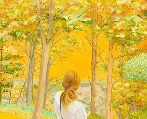 Looking at trees