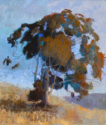 Tree near Baynton