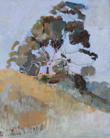 Tree near Glenlyon
