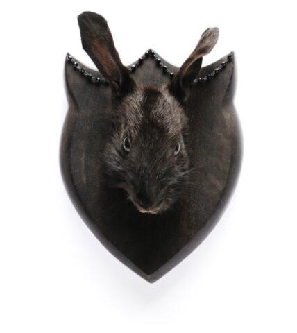 Leporidae mount