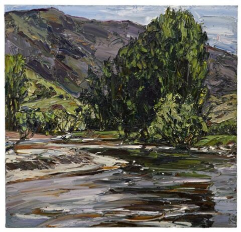 Swampy plains river