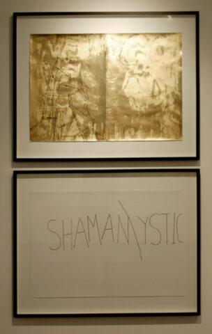 Shaman/mystic (am-ish)