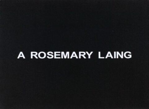 White Box: A Rosemary Laing