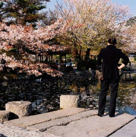 Text Messaging, Maruyama Park, Kyoto