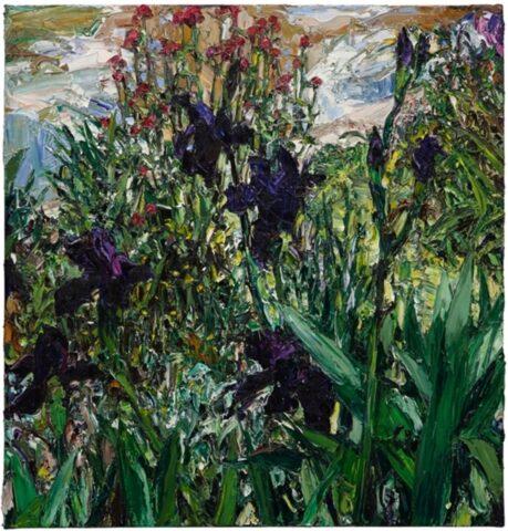 Paris pond irises (1)