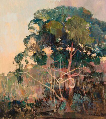 Big tree beside the Yarra at Ivanhoe