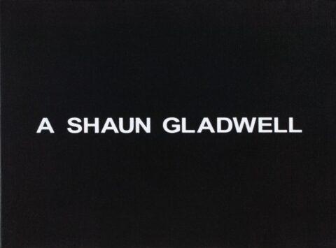 White Box: A Shaun Gladwell