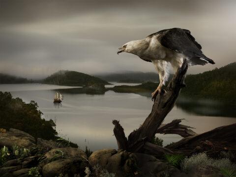 Ghost Ship – Sea Eagle